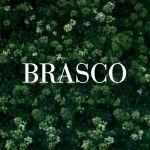 Brasco logo