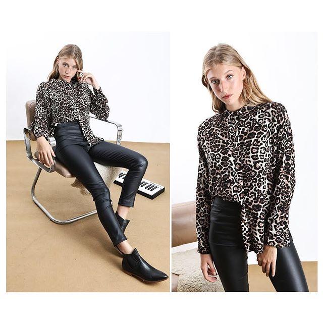 camisa animal print y pantalon engomado cenizas invierno 2019