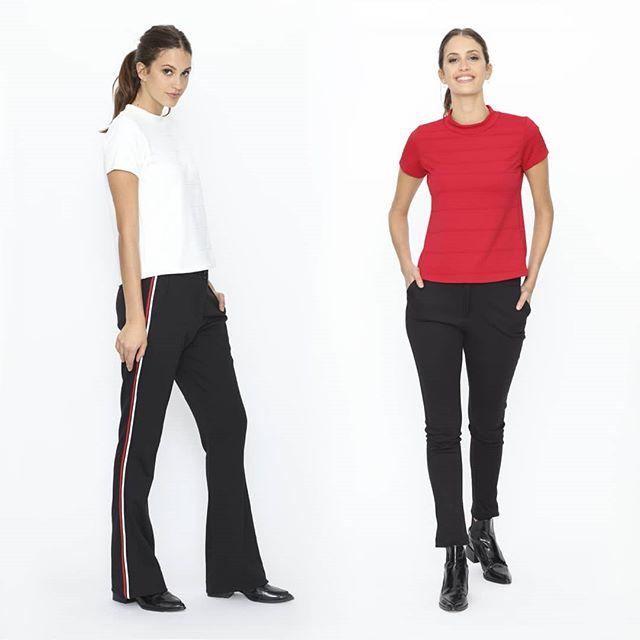 pantalones de vestir urbanos mujer Ted Bodin invierno 2019