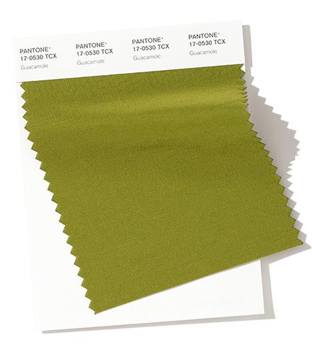 Guacamole Color de moda otoño invierno 2020